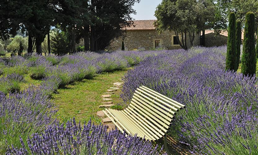 Vacation rental Mas de So in Laudun | Avignon et Provence