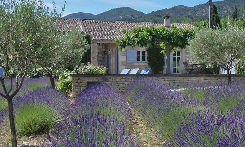 Location de vacances le petit miracle opp de le vieux for Location villa salon de provence