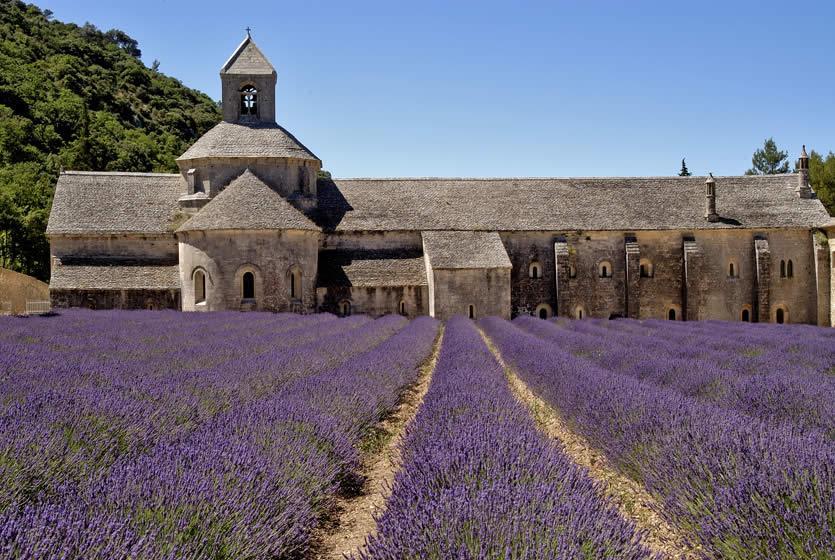 """Résultat de recherche d'images pour """"sénanque abbaye romane"""""""