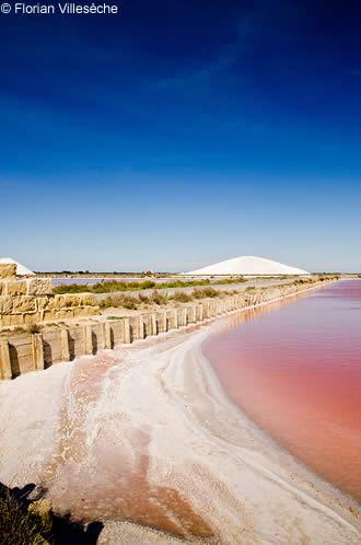The Saltworks of Aigues Mortes in the Camargue Avignon et Provence