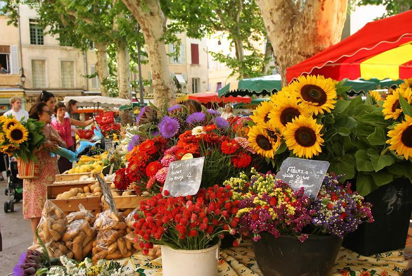 Tourisme aix en provence capitale culturelle de la for Le jardin des 5 sens aix en provence