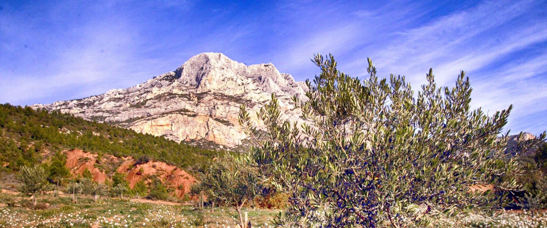 Vineyard Terre De Mistral In Rousset Avignon Et Provence